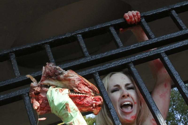 """""""Femen"""" aktyvistės Kijevo zoologijos sode surengė protestą"""