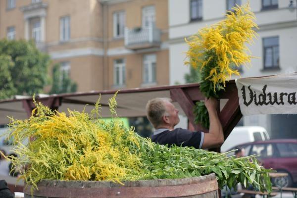 Rotušės aikštėje įsikūrė auksakaliai, puodžiai ir audėjos