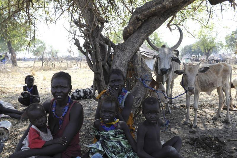 JT: nėra įrodymų apie masines žudynes Pietų Sudane