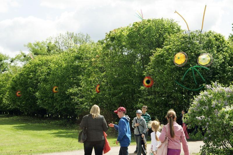 Botanikos sode – Augalų žavadienio šventė