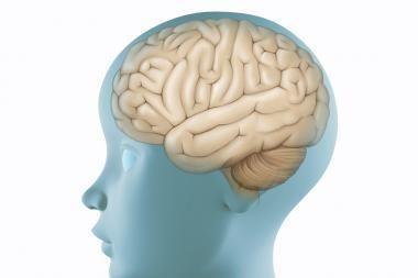 Smegenų trauma girtuoklį pavertė idealiu vyru