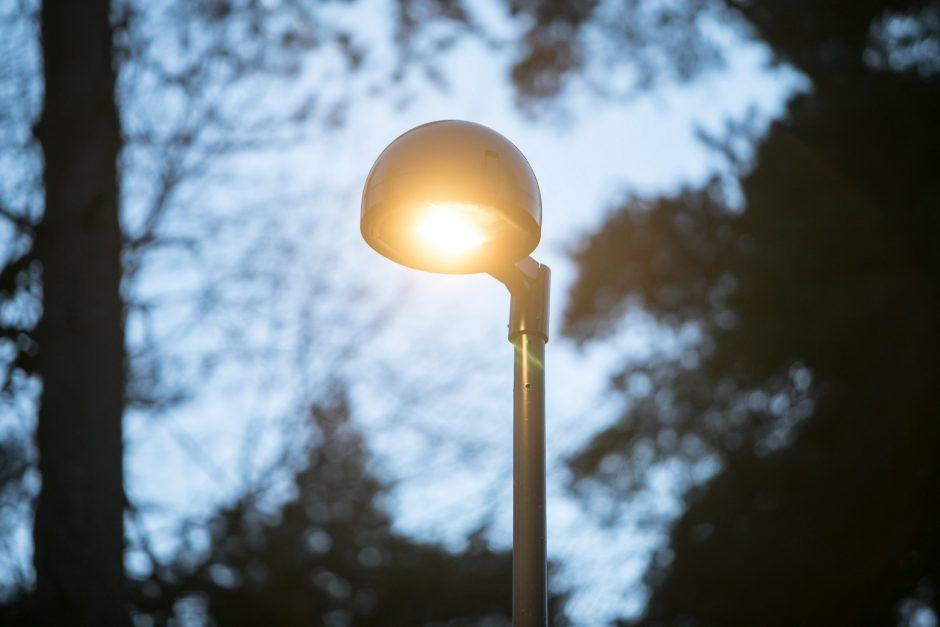 Dainų šventės dalyvius pasitiks moderniai apšviestas Vingio parkas