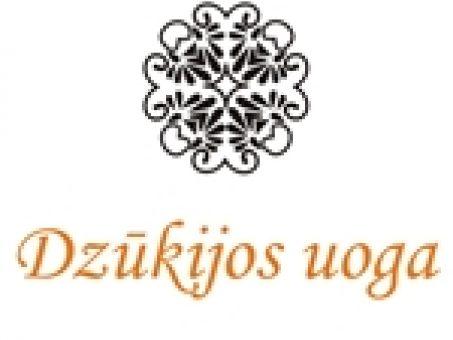 Skelbimas - Kaimo turizmo sodybos nuoma - Dzūkijos uoga