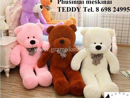 Skelbimas - Meškinų Teddy didmeninė kaina tapo kalėdine!