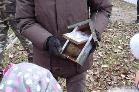 Ornitologai primena: inkilus reikia valyti