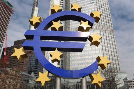 V. Šapoka: nesame įsitikinę atskiro euro zonos biudžeto nauda