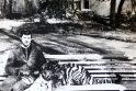 J. ir Č. Norvaišų globojami gyvūnai supranta ir japoniškai