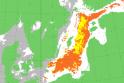 """Kodėl """"žydi"""" Baltijos jūra? Ar tai pavojinga?"""