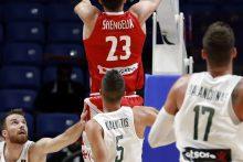 Skaudus Europos čempionato startas: Lietuva dramatiškai nusileido Gruzijai