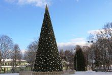 Druskininkai kviečia į karališkos Kalėdų eglės įžiebimo šventę