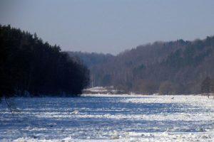 Gamtos paslapčių mėgėjams – žiemos žygis po Karmazinų kalvas