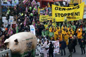 Vokietijos ūkininkai protestuoja prieš GMO