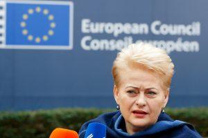 Prezidentė su ES vadovais tarsis, ko imtis dėl Rusijos veiksmų
