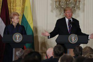 D. Grybauskaitė atsargiai vertina D. Trumpo ir V. Putino susitikimą