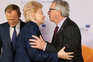 Sveikinti Lietuvos atvyksta Lenkijos prezidentas, ES institucijų vadovai