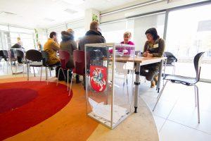 Strigusi rinkimų sistema sutaisyta, VPT išvadų dar laukiama