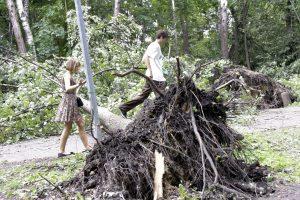 Alytaus rajoną niokojusio škvalo nuostoliams padengti skyrė 72 tūkst. eurų