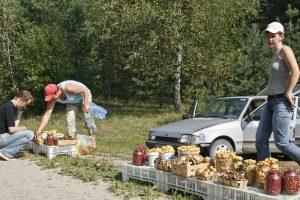 Lietuviai aktyviai ieško būdų, kaip prisidurti prie algos