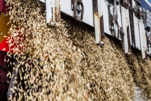 Lietuvos gamintojams – galimybė ekologiškus produktus gabenti į Kiniją