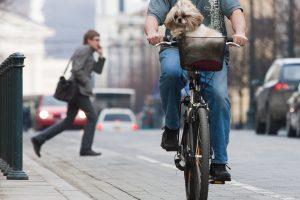 Vilniuje automobilis partrenkė dviratininkę