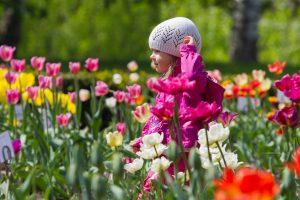 Balandis stebina: po lietingų dienų plūstels įspūdinga šiluma