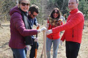 Plinta nauja gerumo iniciatyva – dovanoti miestui medžius