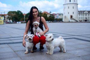 Neeilinė vasara Vilniuje: kviečia tapti turizmo savanoriais