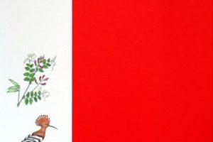 Rengiant naują Lietuvos raudonąją knygą savo žodį tars ir visuomenė