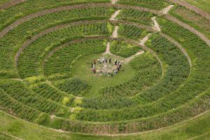 Inkų sumanumas: paslaptingų senovės terasų kilmės mokslininkai neišaiškina