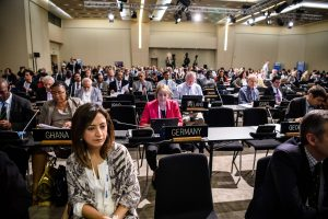 UNESCO sesijoje – dėmesys pasaulio paveldo apsaugai nuo teroro išpuolių