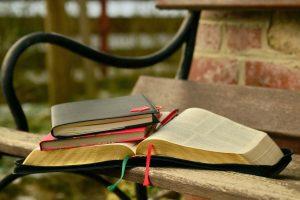 Du tekstai apie šėlą: gydantis nuo meilės ir svaiginantis nuo vaizduotės