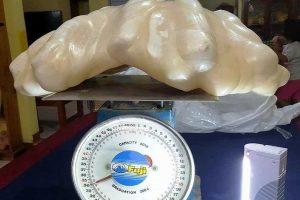Vargšas filipinietis nežinodamas namie laikė 100 mln. dolerių vertės perlą