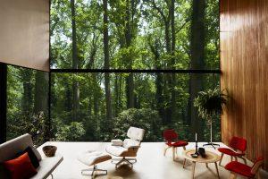Namuose – prarasto ryšio su gamta paieškos
