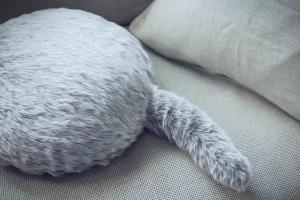 Sukūrė katę-robotą, kuri teiks pilną malonumų komplektą