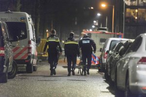 Incidentas Olandijos mieste: vyras tyčia rėžėsi automobiliu į miesto rotušę