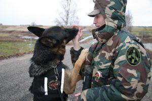 Pasieniečiai įgijo įgūdžių panaudojant šunis objektų paieškoje