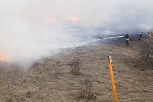 Aplinkosaugininkai: šiemet jau išdegė daugiau hektarų žemės nei pernai tuo pačiu metu