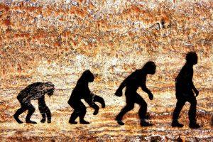 Kodėl homo sapiens genitalijos tokios didelės?