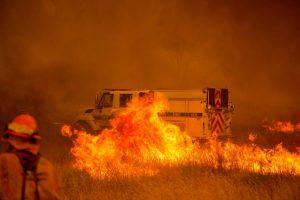 Amerikoje ir toliau siaučia miškų gaisrai, žuvo vienas žmogus