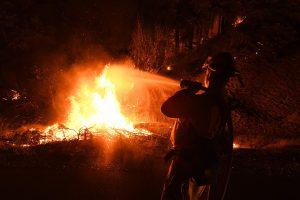 Žuvusių per miško gaisrą Kalifornijoje skaičius didėja – artėja prie 80