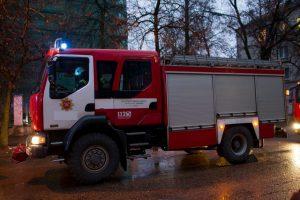 Kaišiadoryse dūmų detektorius įspėjo apie gaisrą: išgelbėta moteris ir du šuniukai