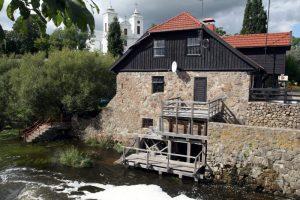 Aplinkos ministerija ieško vadovo V. Into akmenų muziejui