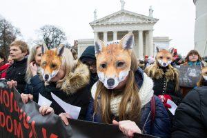 Katedros aikštėje – eitynės už gyvūnus