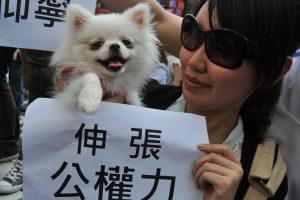 Taivane uždrausta vartoti katieną ir šunieną