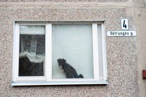 Gyventojus išgąsdino neaiškūs langų tikrintojai