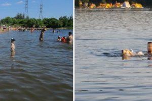 Kaunietė stebisi: kodėl Lampėdžio ežere vaikai priversti maudytis su šunimis?