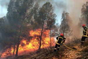 Dėl gaisrų pavojaus ketinama riboti lankymąsi šalies miškuose