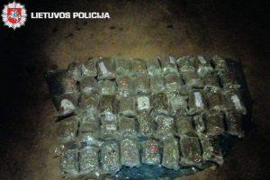 Kanapių kontrabandininko kelionė baigėsi areštinėje