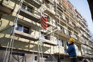 Nusivylę valstybine renovacija dairosi alternatyvų