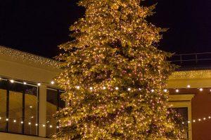 Klaipėdoje vėl skelbiama Kalėdų eglutės paieška